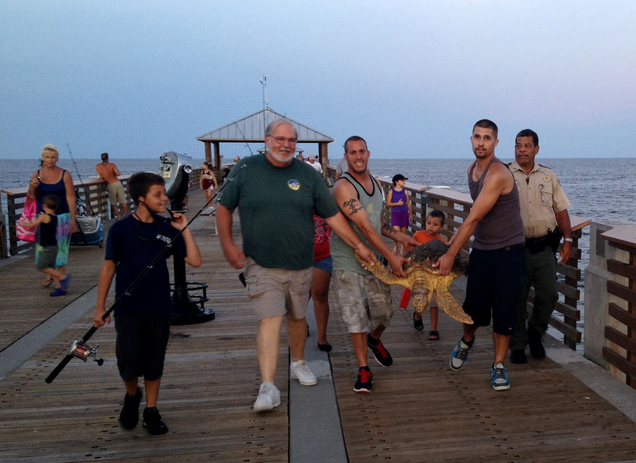 Endangered Sea Turtle Hooked And Rescued At Juno Beach Fishing Pier