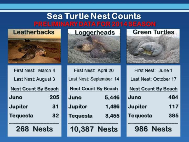 nest count 2014prelim