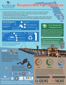 Juno_pier_infographic(2013)