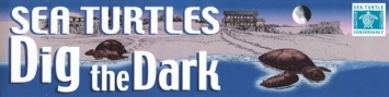 sea_turtles_dig_the_dark_bumpersticker_front